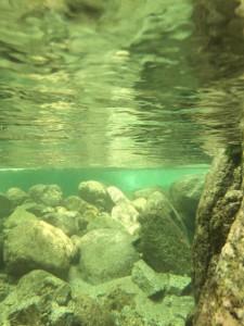 少し潜ると、水の中はこんな感じです。