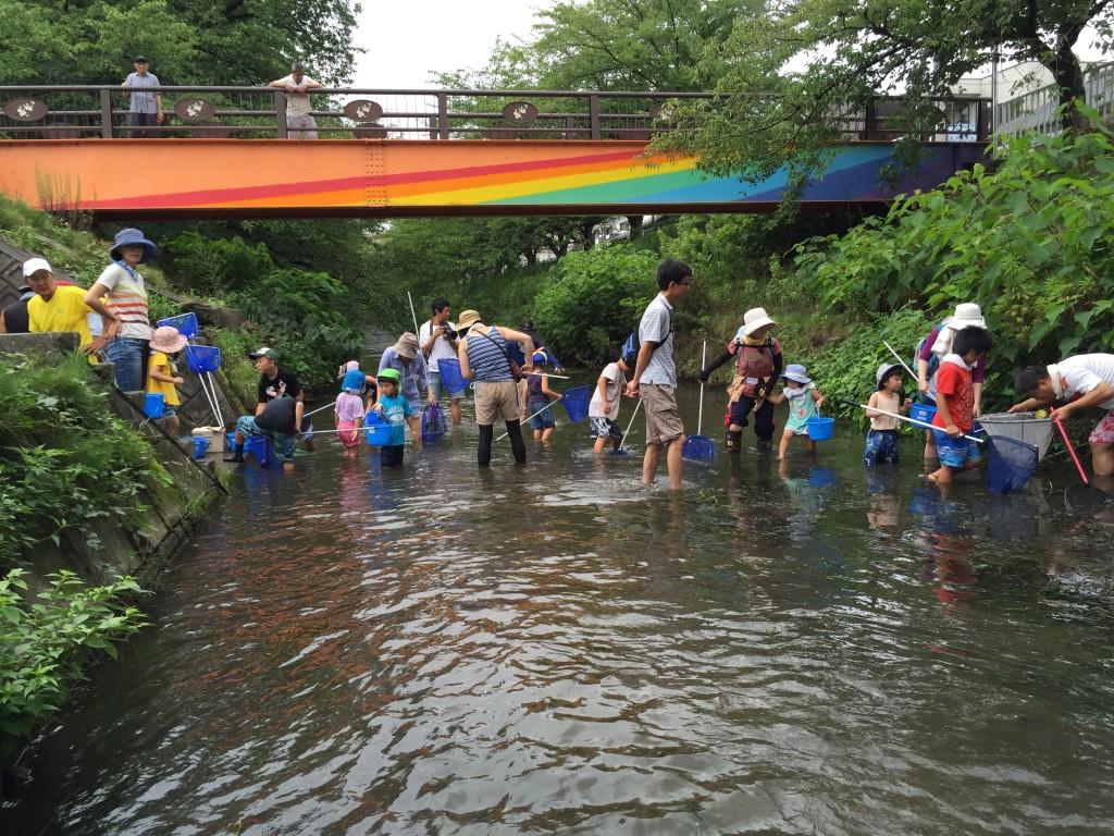 本来、子どもが遊ぶ川こそが健全なのです。