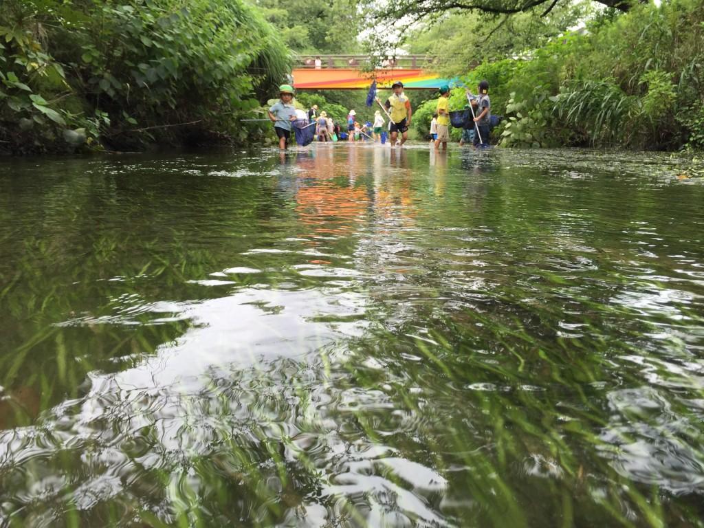 生き物がたくさん棲んでいて、子どもたちが自由に水辺に降りられ、大人たちもそれを見守っていられる川、そんな川がいい川。
